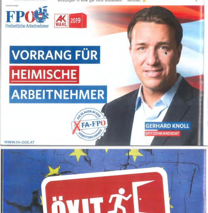 Info-Direkt 2019: Anzeige FPÖ